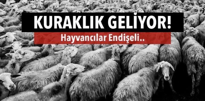 KURAKLIK GELİYOR, TIKLA OKU!